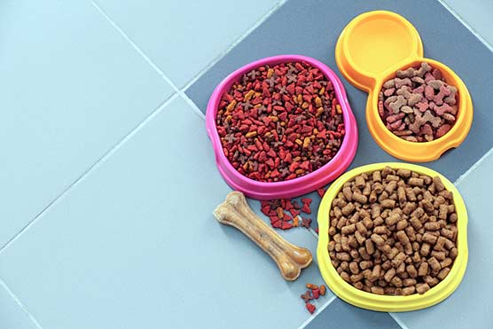 Pet-Nutrition-Food