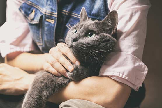 7-Mistakes-cat-owners-make